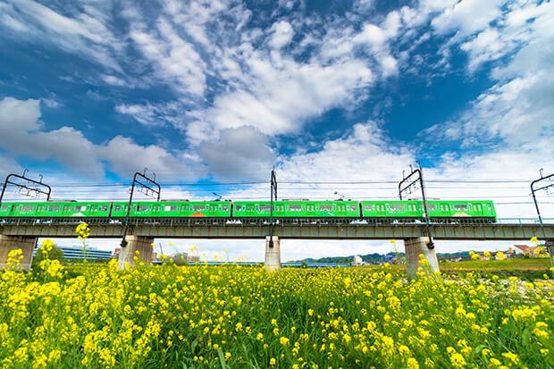 A Mt. Takao train