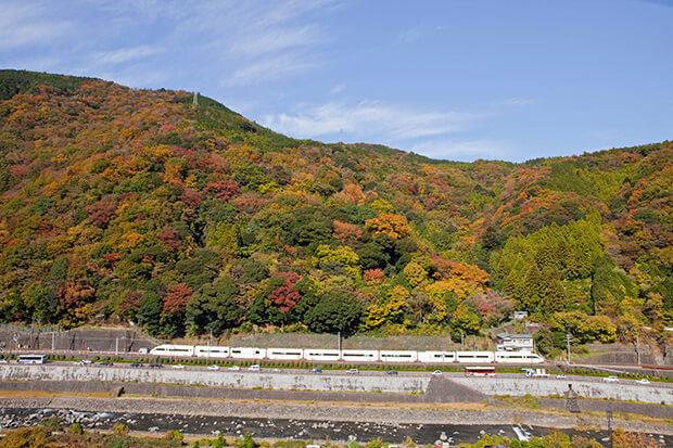 The Romancecar rolling into Hakone in autumn