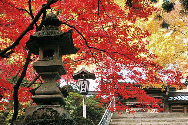 Daiyuzan Saijoji Temple (in autumn)