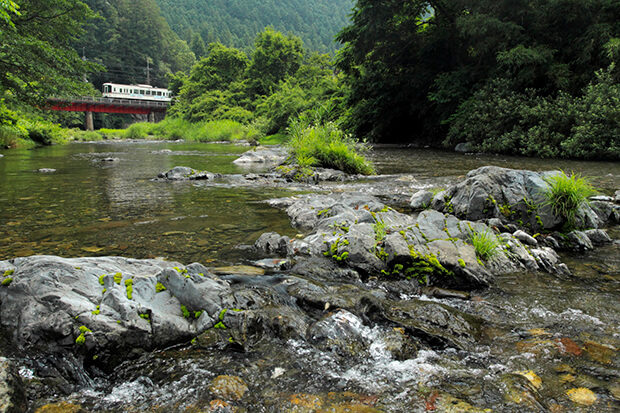 고마가와 강의 맑은 수질