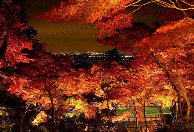 쓰쿠바야마 산의 단풍과 야경