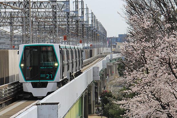 21编组与樱花