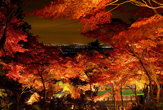 筑波山的红叶与夜景