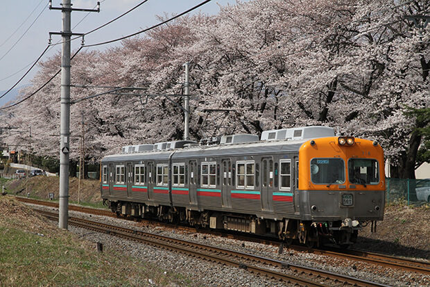 櫻花的名勝與700型