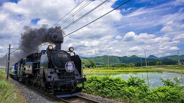 รถไฟไอน้ำ SL