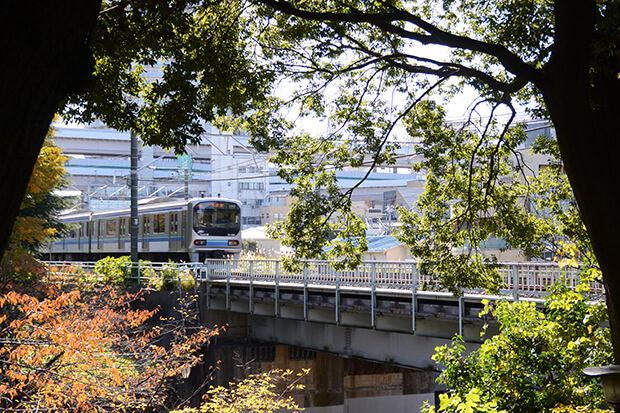 รถไฟฟ้าสายรินไคแล่นกลางสายลมฤดูใบไม้ร่วง