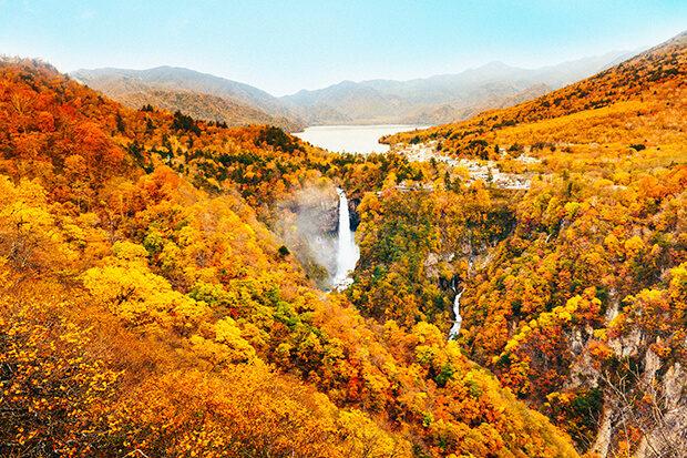 秋色の奥日光
