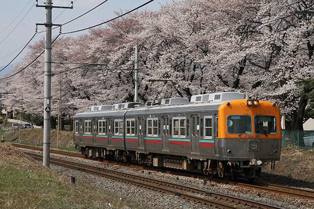 桜の名所と700形