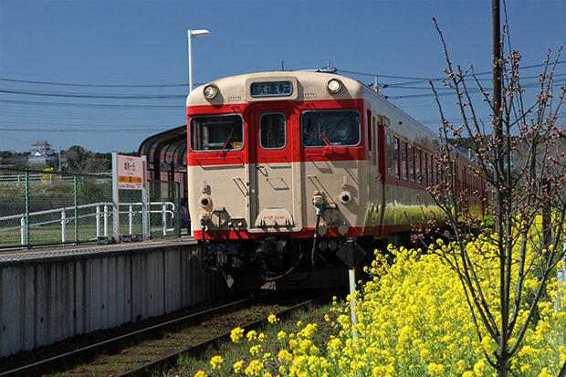 早春の城見ケ丘駅 キハ52と遠景に大多喜城を望む